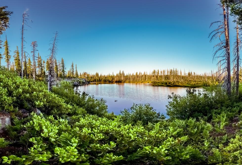 Island Lake- Three Sisters Wilderness