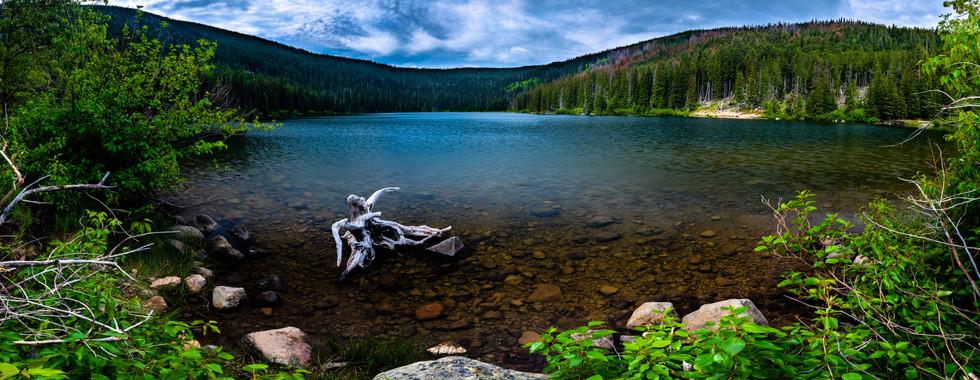 Badger Lake- Mt. Hood National Forest