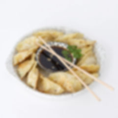 explore-the-world-guide-japan-gyoza-reci
