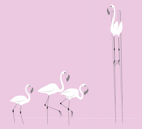 social distancing flamingo