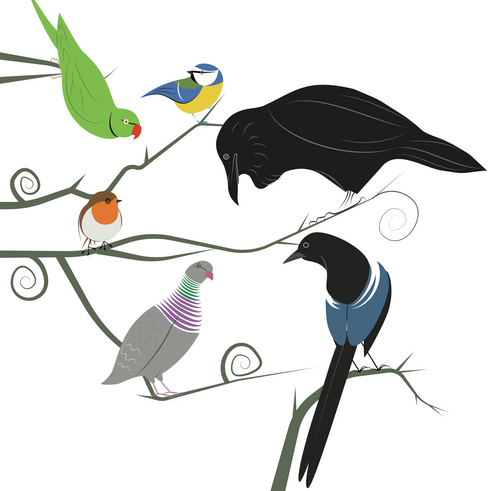 birds of hampstead heath