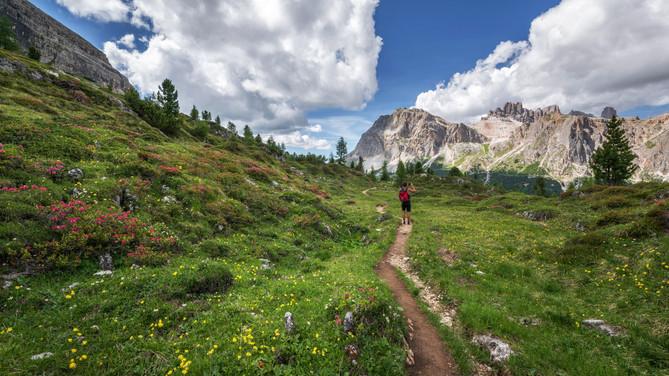 Trail Running a Half Marathon