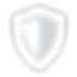 icons8-security-shield-64 (1).png