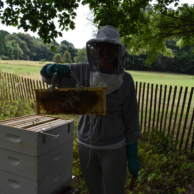 Hive-five to all you beekeepers out there!