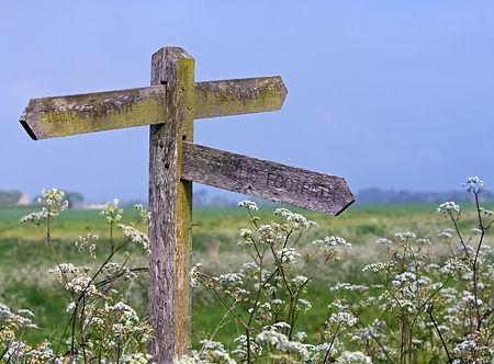 signpost-164908.jpg