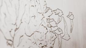 Nudging Mastery — A conversation with Jordan Birnbaum.