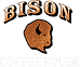 bison logo small.png