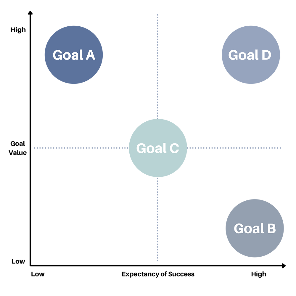 The chart visualizes goal expectancies and values.