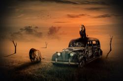 NICOLE HOLZ - THE USED CAR DEALER