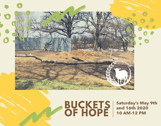 Buckets of Hope graphic.jpg