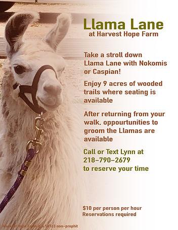 Llama Lane Flyer.jpg