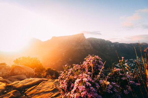 Table Mountain Sunrise