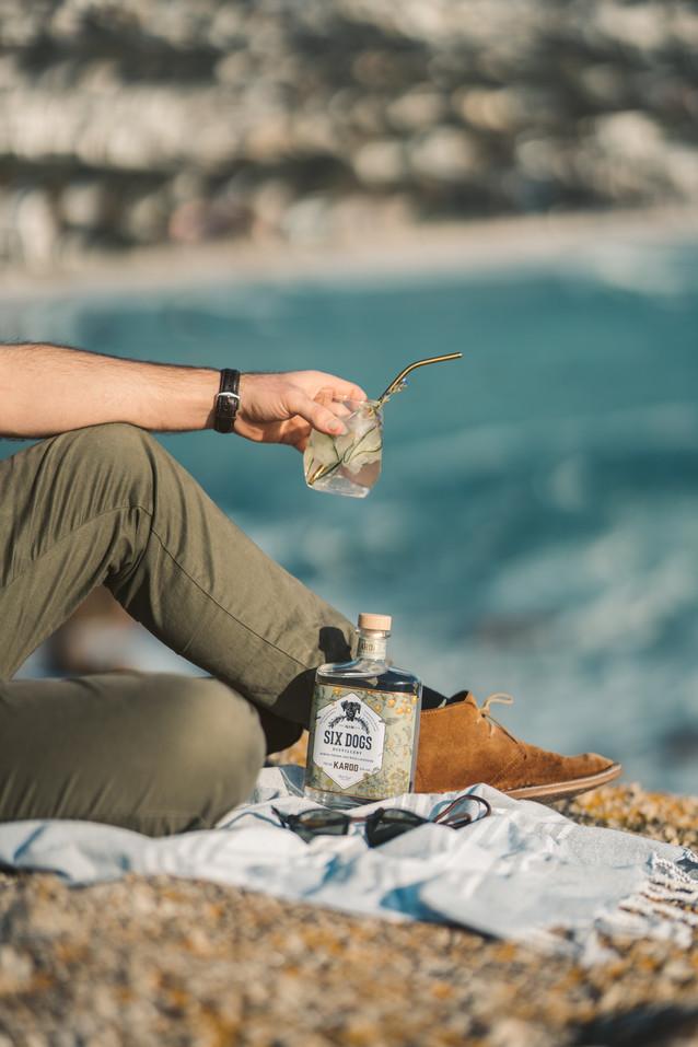 Karoo Gin IG STORY crop.jpg