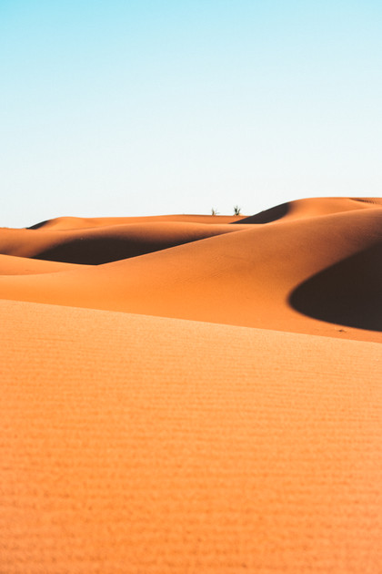 Sahara Shadows