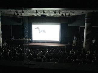 Screening and panel at University of Illinois Springfield