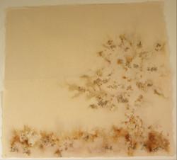 Pé de corrosão (em processo) - 2011