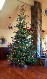 Decorated Christmas Tree 04.png