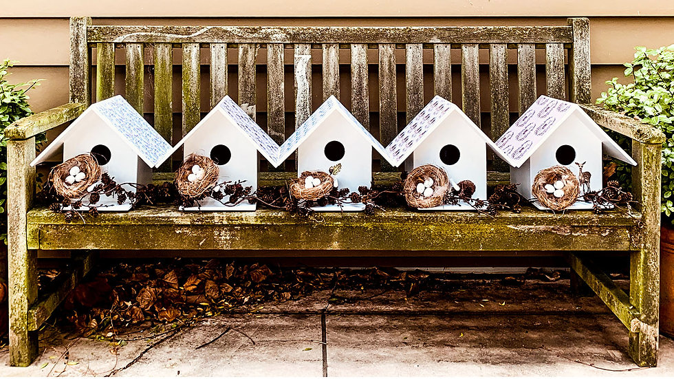 Sparrow/Starling Bird Houses