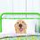 Thumbnail: Golden Retriever Pillow Case
