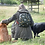 Thumbnail: Fetch Folding Rucksack