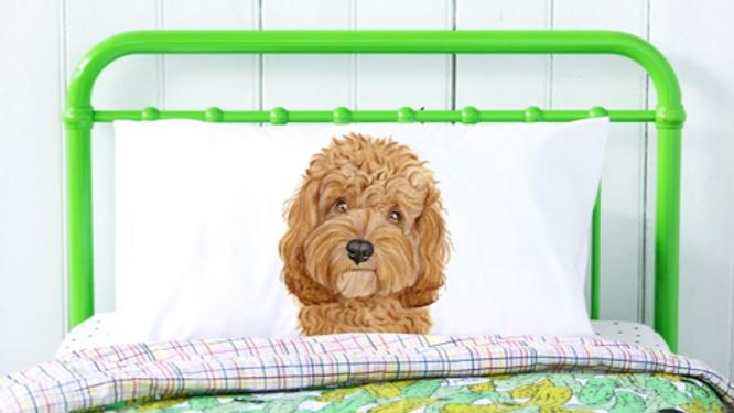 Cavoodle Pillowcase