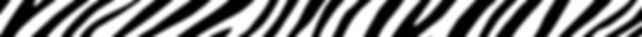 Zebra nerrow.jpg