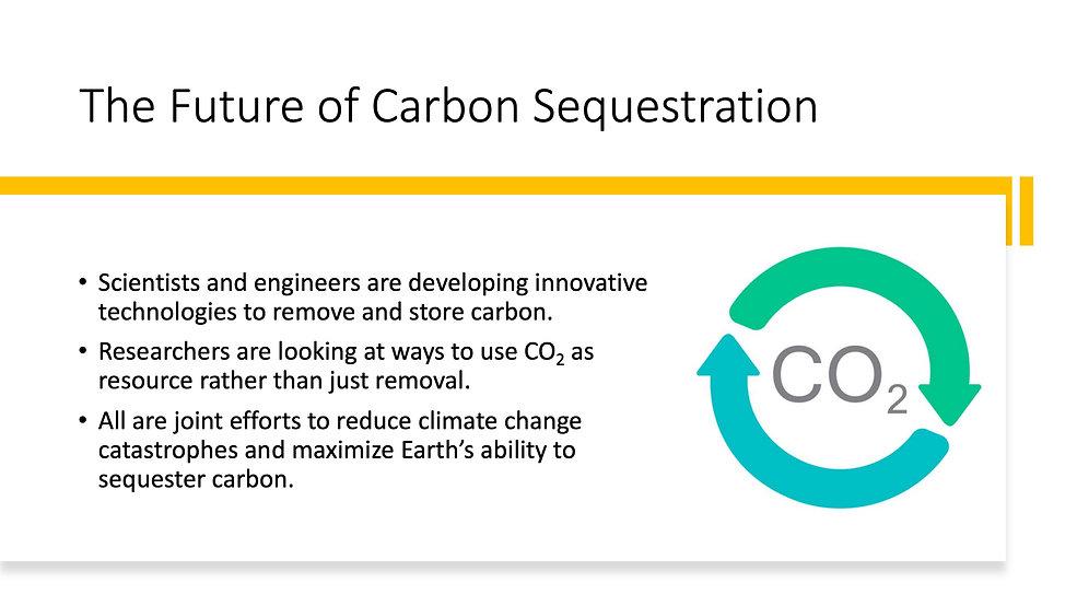 Carbon Sequestration 8.jpeg