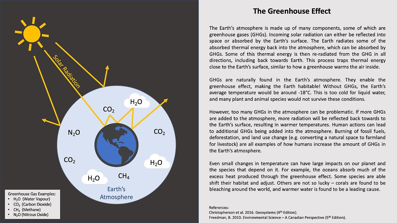 Greenhouse Effect.jpeg