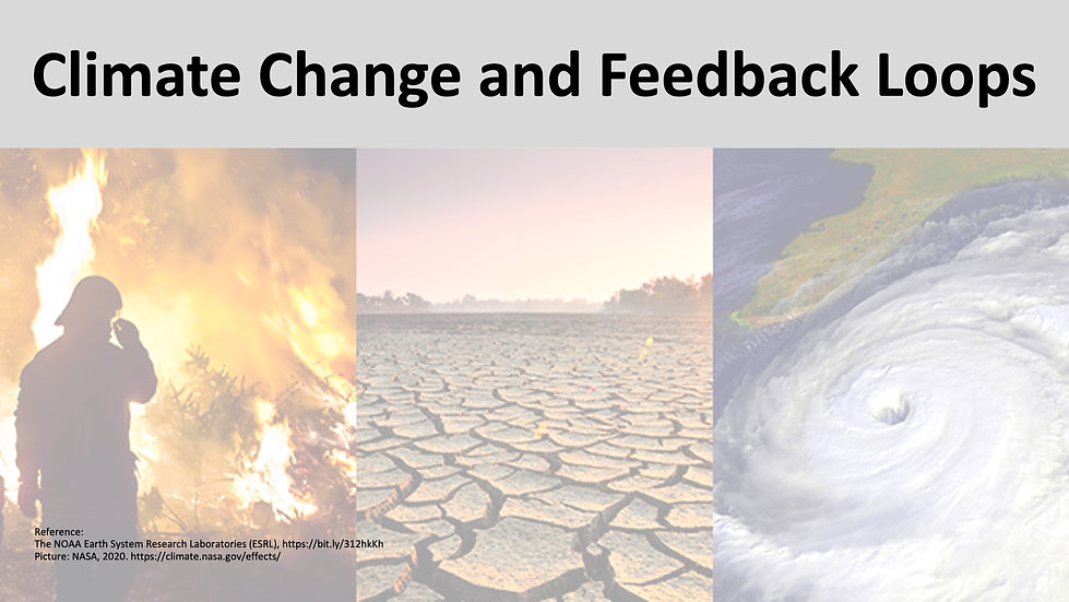 Climate Feedback Loops.jpeg