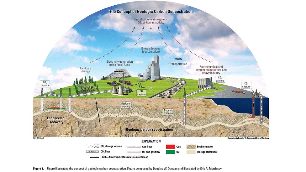Carbon Sequestration 6.jpeg