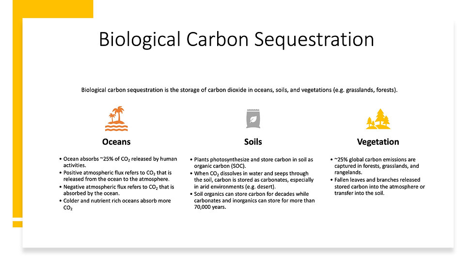 Carbon Sequestration 3.jpeg