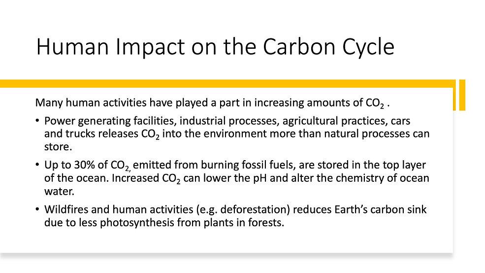 Carbon Sequestration 7.jpeg