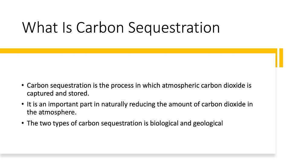 Carbon Sequestration 2.jpeg