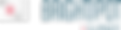 Brightspot Logo.png