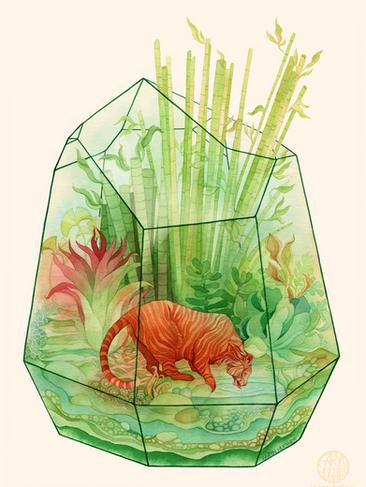 Tigerarrium