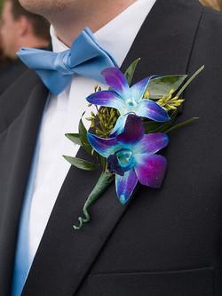 two blue singapore orchids boutonniere