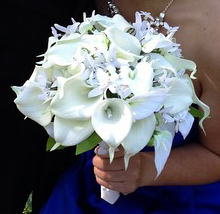 Bridesmaid bouquet Ash and Bry wedding