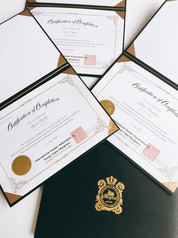Certification 3.jpg
