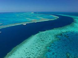 cruise-whitsunday-reef-aerial-shot