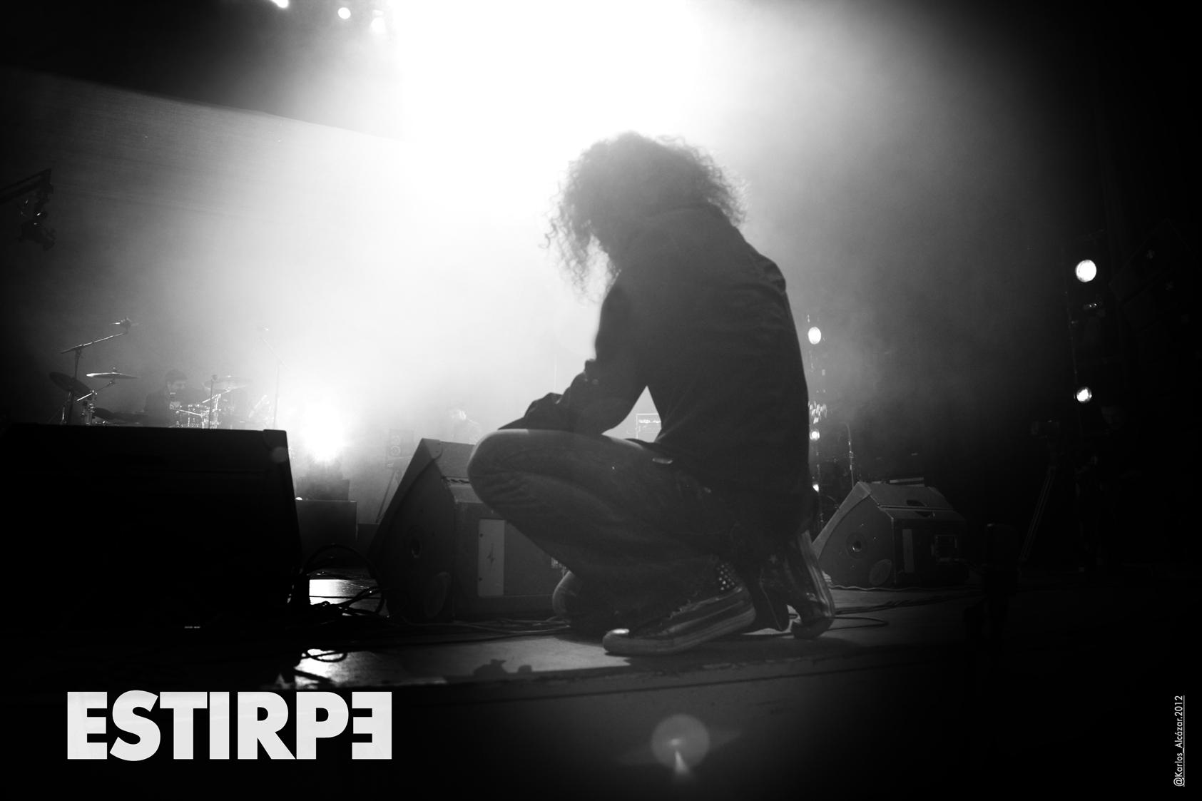 ESTIRPE-PIC-02-web