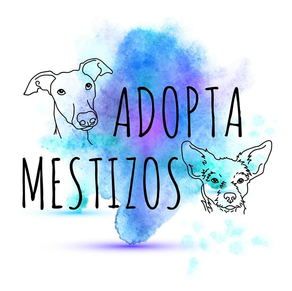 logo adopta