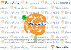 ENVOLTORIO NARANJAS a3 castellano