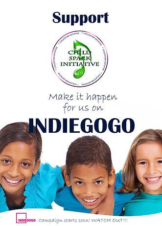 Indiegogo Campaign Pic4Website copy3.jpg
