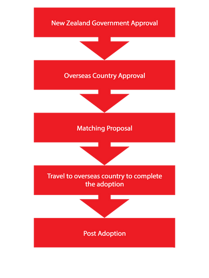 The 5 Main Steps in the Adoption Process