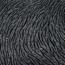 Crevasse Field
