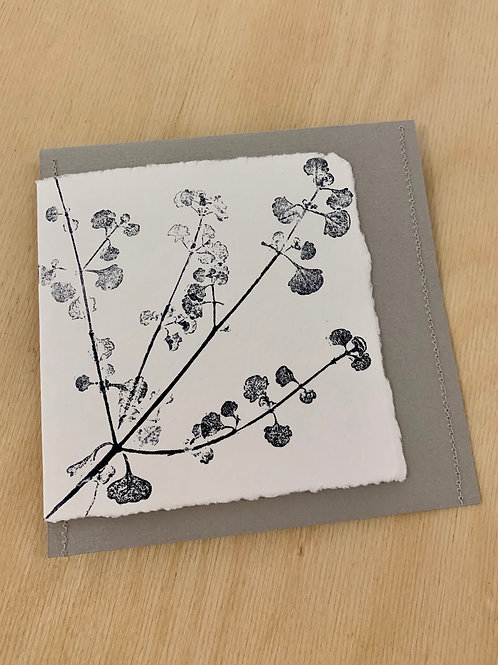 Gift Card - Nature series - Native Mint Bush