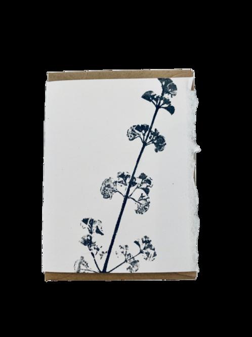 Gift Card - Small - Nature series - Mint Bush