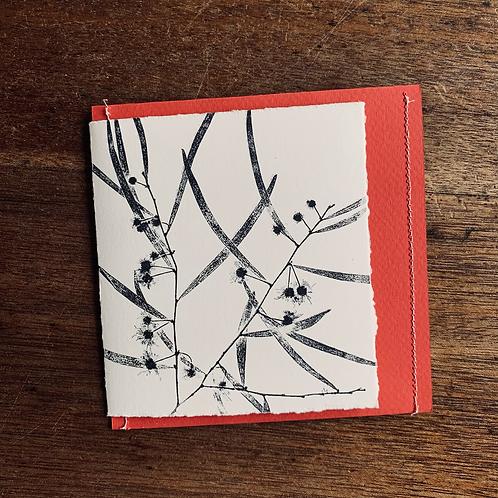Gift Card - Nature series -  Wattle Flowering III