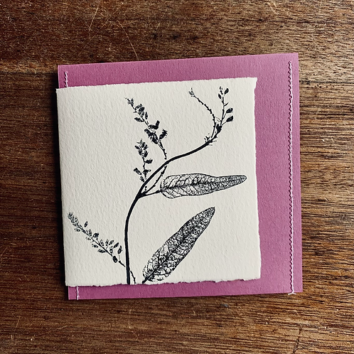 Gift Card - Nature Series - Pack of 4