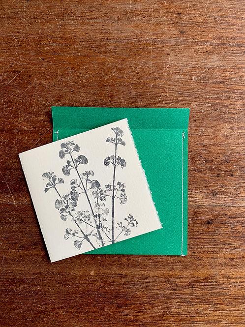 Gift Card - Nature series - Mint Bush